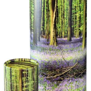 Bluebell Forest Tube